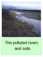 The polluted rivers and soils